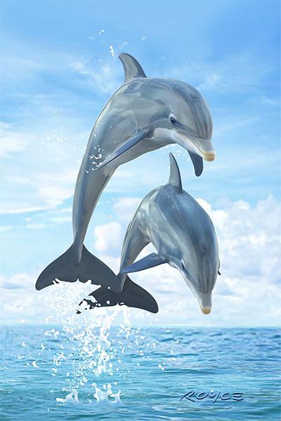 Dolphins Flip Postcard